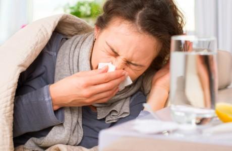 צמחי מרפא למניעה ולטיפול שפעת